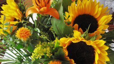 autumn-bouquet-1712527_960_720